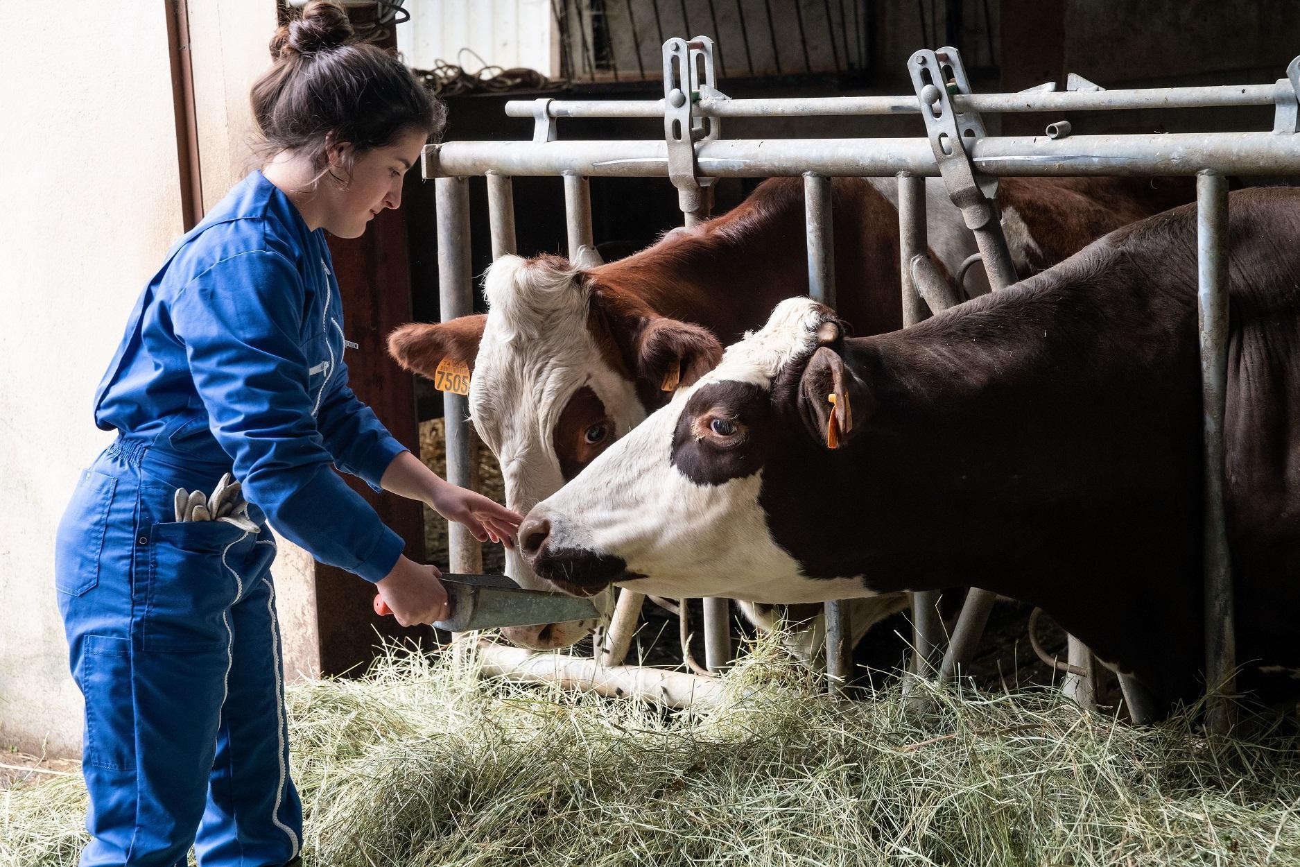 Le lycée agricole de Contamine-sur-Arve  fort d'un siècle d'enseignement