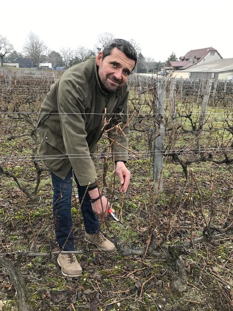 Stephane G.soigne sa vigne en toutes saisons ©AgenceTexto