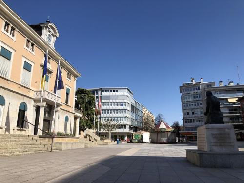 Annemasse : malgré le coronavirus, un conseil municipal réuni samedi