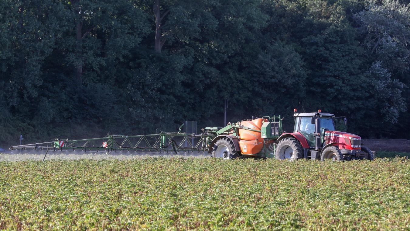 Pour cet agriculteur les produits phytosanitaires sont « un gage de qualité et de rendement ». Photo d'illustration © Thierry Thorel
