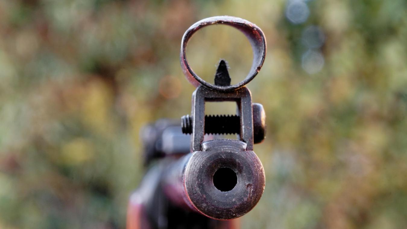 Un homme a été interpellé par les gendarmes mercredi 2 octobre 2019 dans le hameau de Balmont, à Seynod (Annecy). Dans une situation d'agitation et de détresse, il tirait en l'air à la carabine dans le jardin à l'arrière de sa maison, ce qui a effrayé ses voisins. (photo Pixabay / Bru-nO)