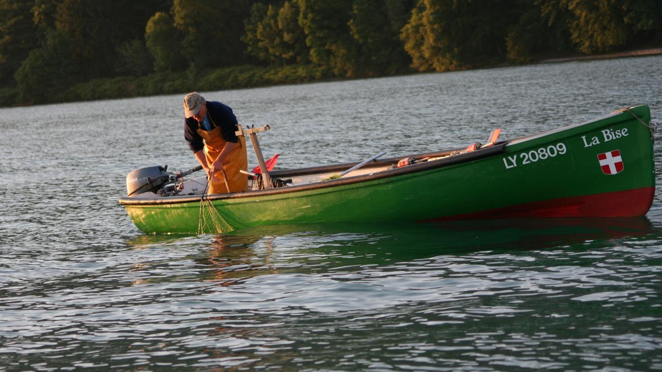 Il existe 140 pêcheurs professsionnels sur le Léman.