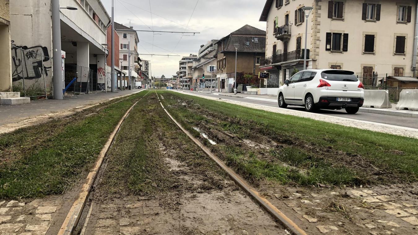 (PHOTOS) Les pelouses des rails du tramway «labourées par des abrutis» à Gaillard et Ambilly