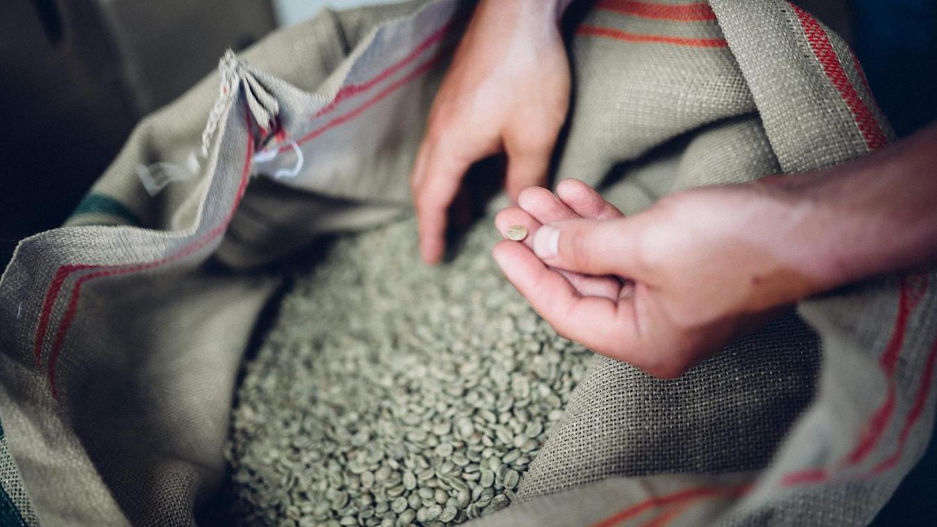 Antoine Roche et Rodrigue Maillard ont créé Altitude café sur la base d'une recherche de qualité.
