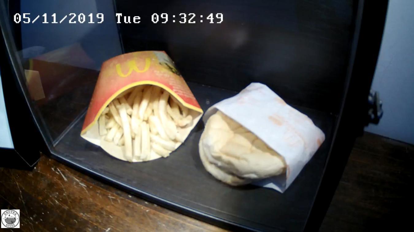 Grâce à une caméra placée dans la boîte, on peut suivre sur internet la lente agonie du dernier hamberger McDonald's d'Islande.