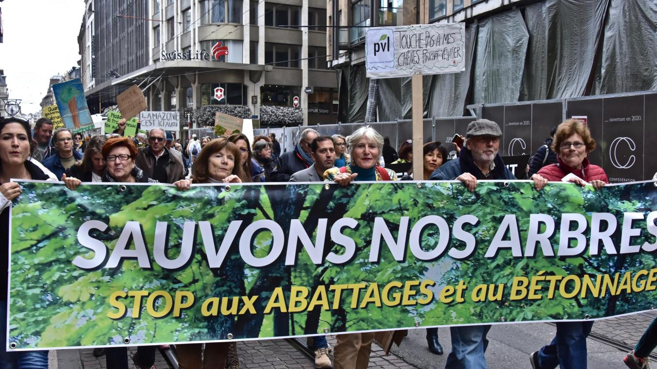 Samedi 9 novembre, une manifestation rassemblant 300 personnes environ s'est déroulée à Genève contre l'abattage des arbres. ©DRK