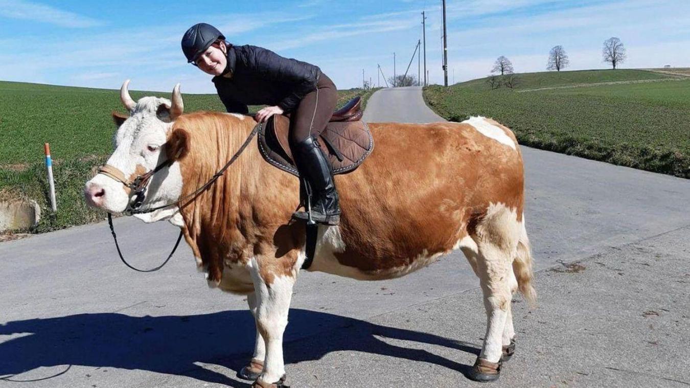 Lydia n'a pas pu apprendre à monter à cheval alors elle est monté à dos de vache.