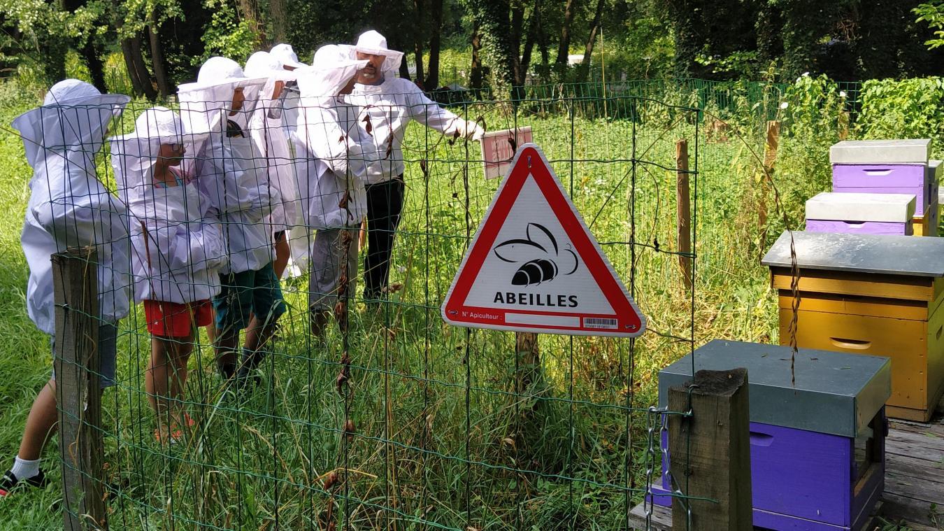 Saint-Genis-Pouilly: à la découverte de l'univers des abeilles!