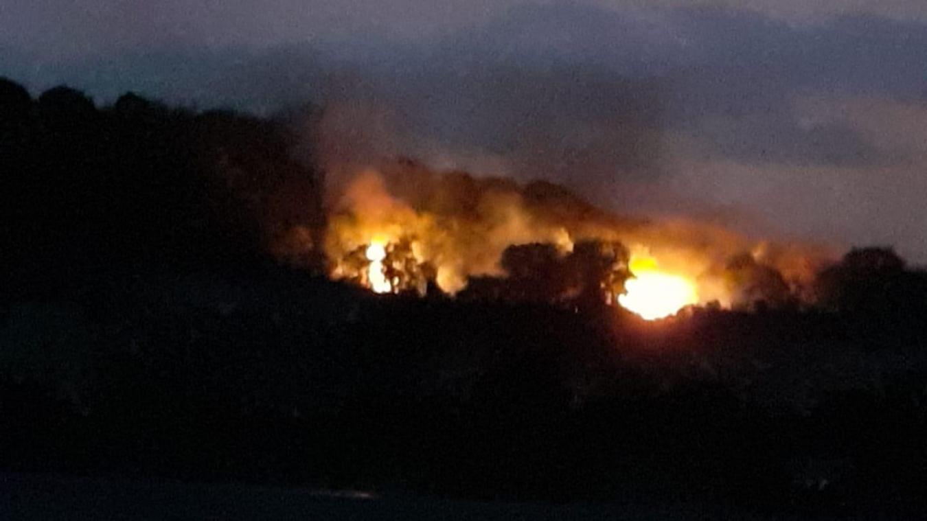 Chambéry: 3000 mètres carrés de broussailles ont brûlé au parc des Monts