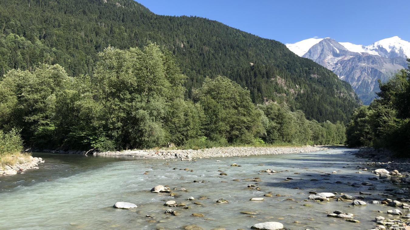 Les fortes chaleurs actuelles réduisent les débits des cours d'eau, tel que l'Arve.
