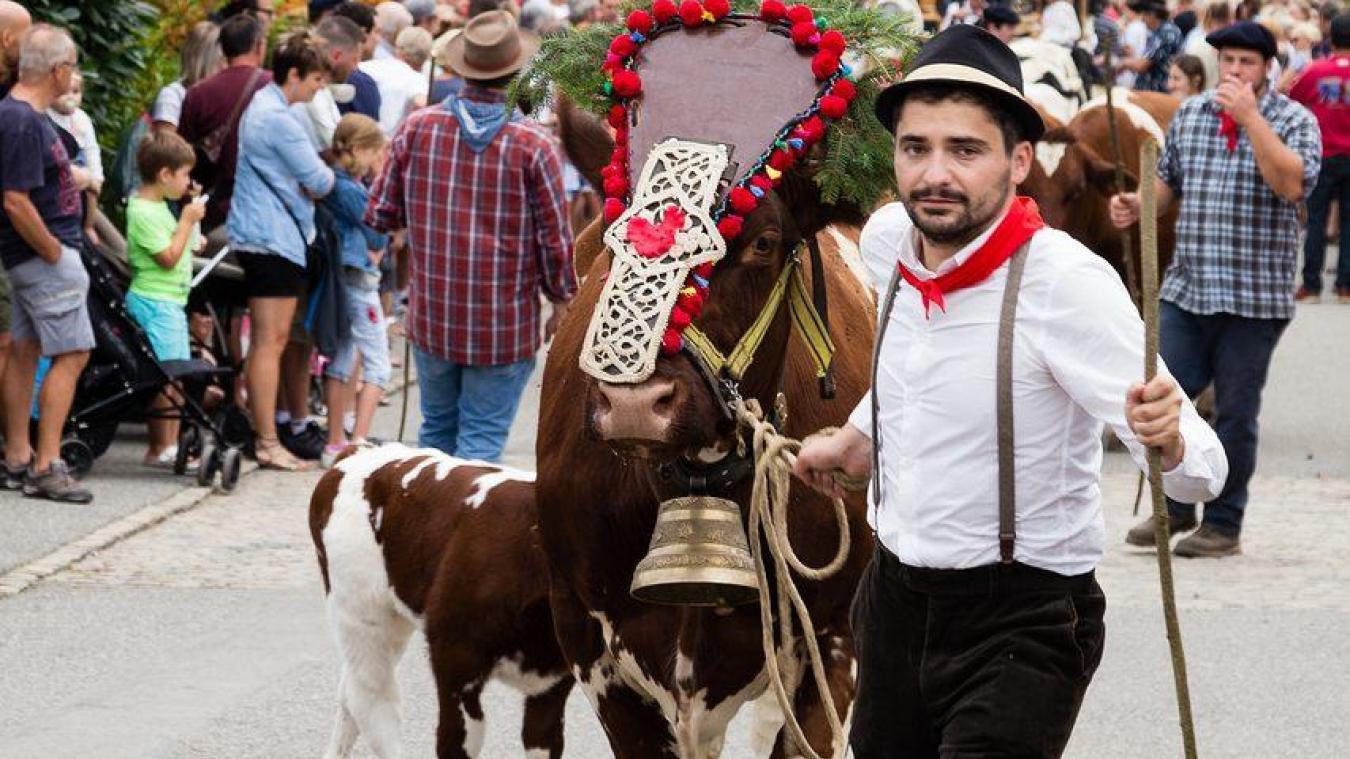 La Fête du Vieux Seynod est un événement organisé chaque 1 er  week-end de septembre.