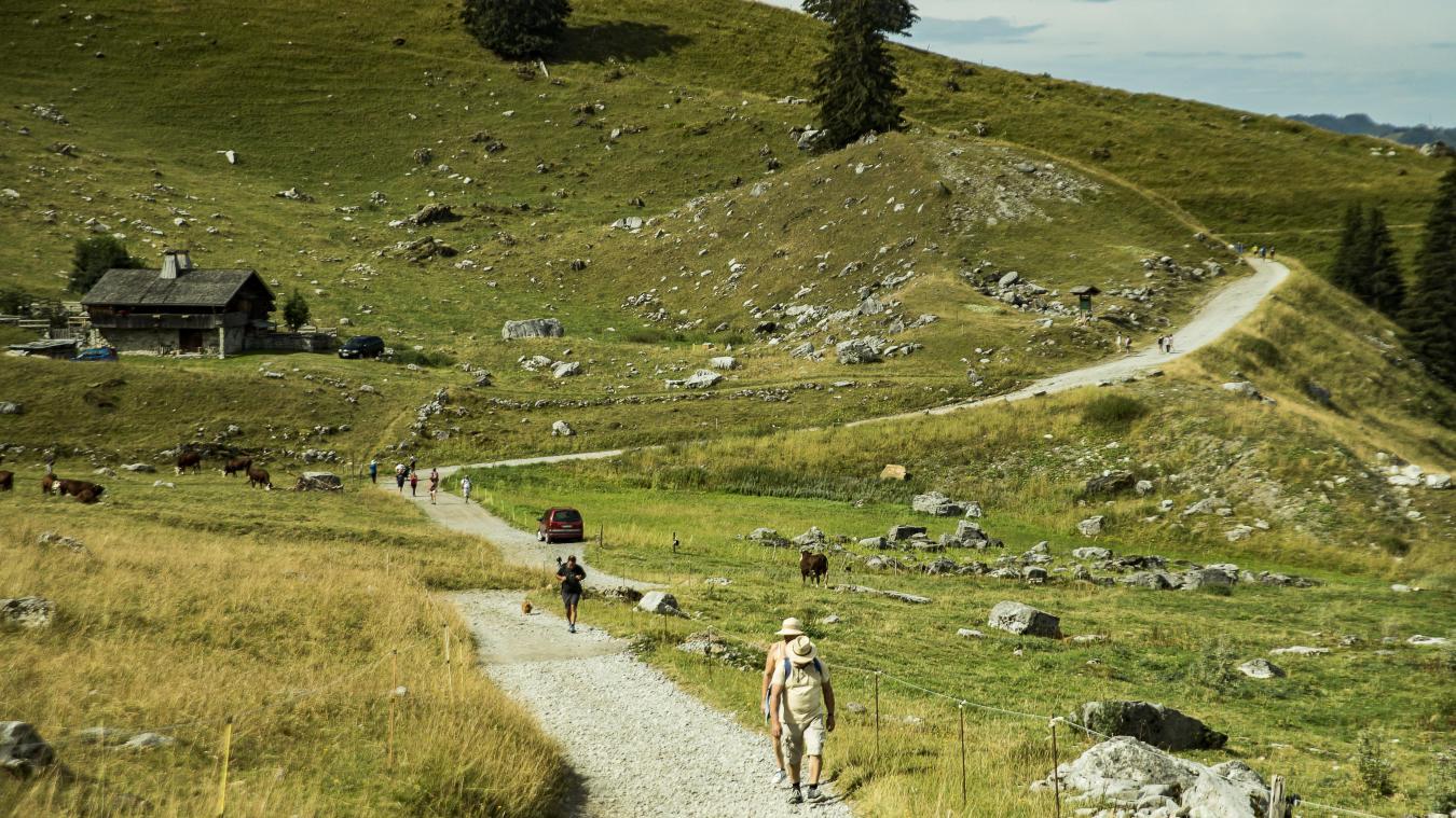Au-dessus de La Clusaz, les sentiers sont particulièrement fréquentés cette été.