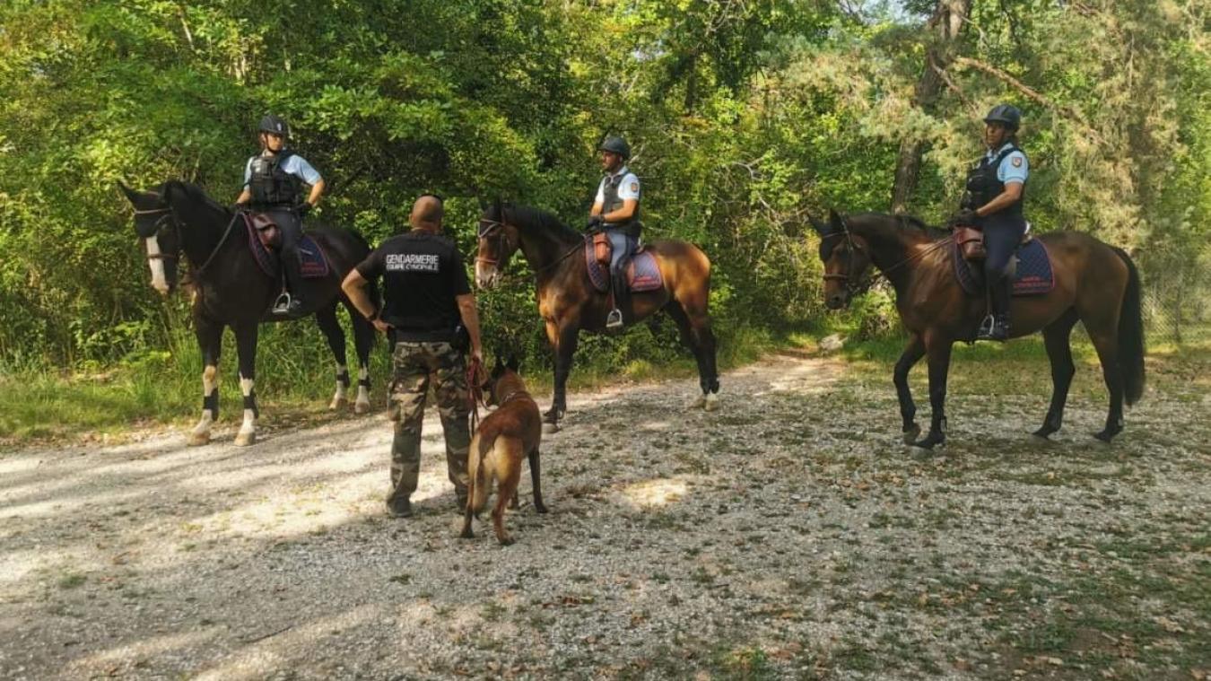 En photo, les brigades cynophiles et équetres de la gendarmerie en mission ce week-end sur le bassin annécien et les Aravis.