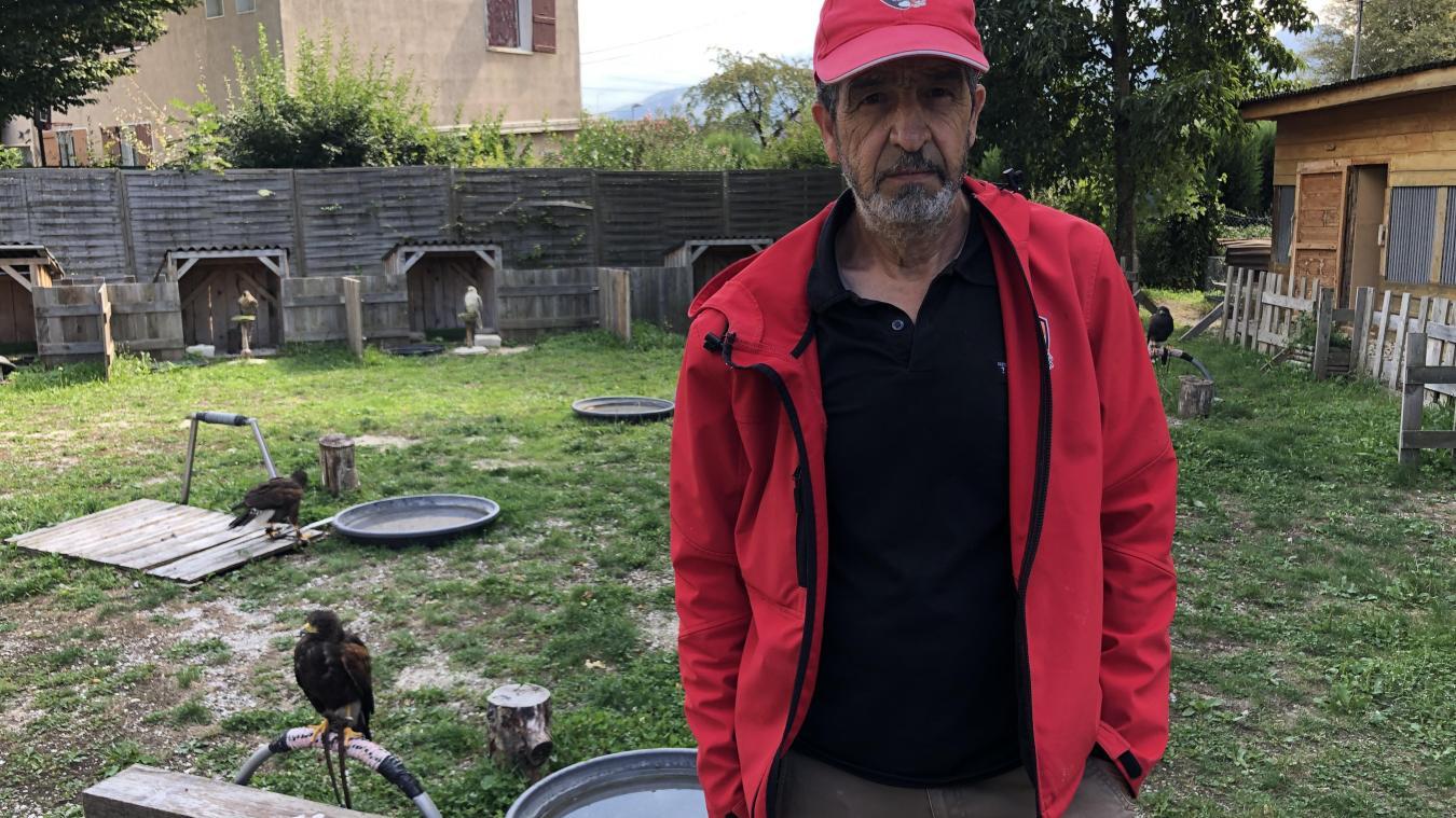 Fauconnier des Alpes, Tahar Meguireche est fasciné par les rapaces depuis toujours.