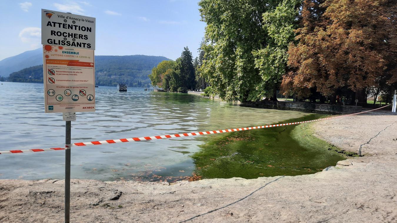 La Ville d'Annecy avait mis une signalétique pour interdire la baignade.