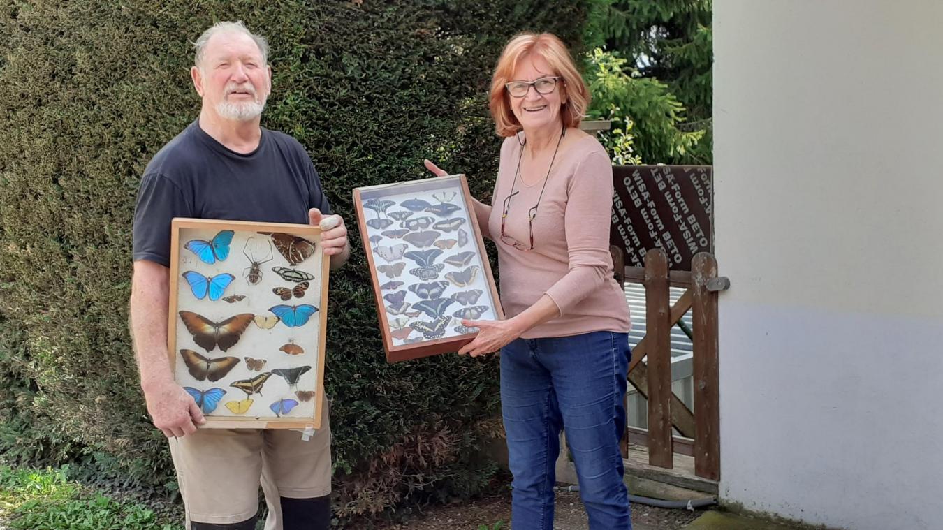Roland, fier de présenter sa collection de papillons exotiques, glanés en Afrique et en Guyane.