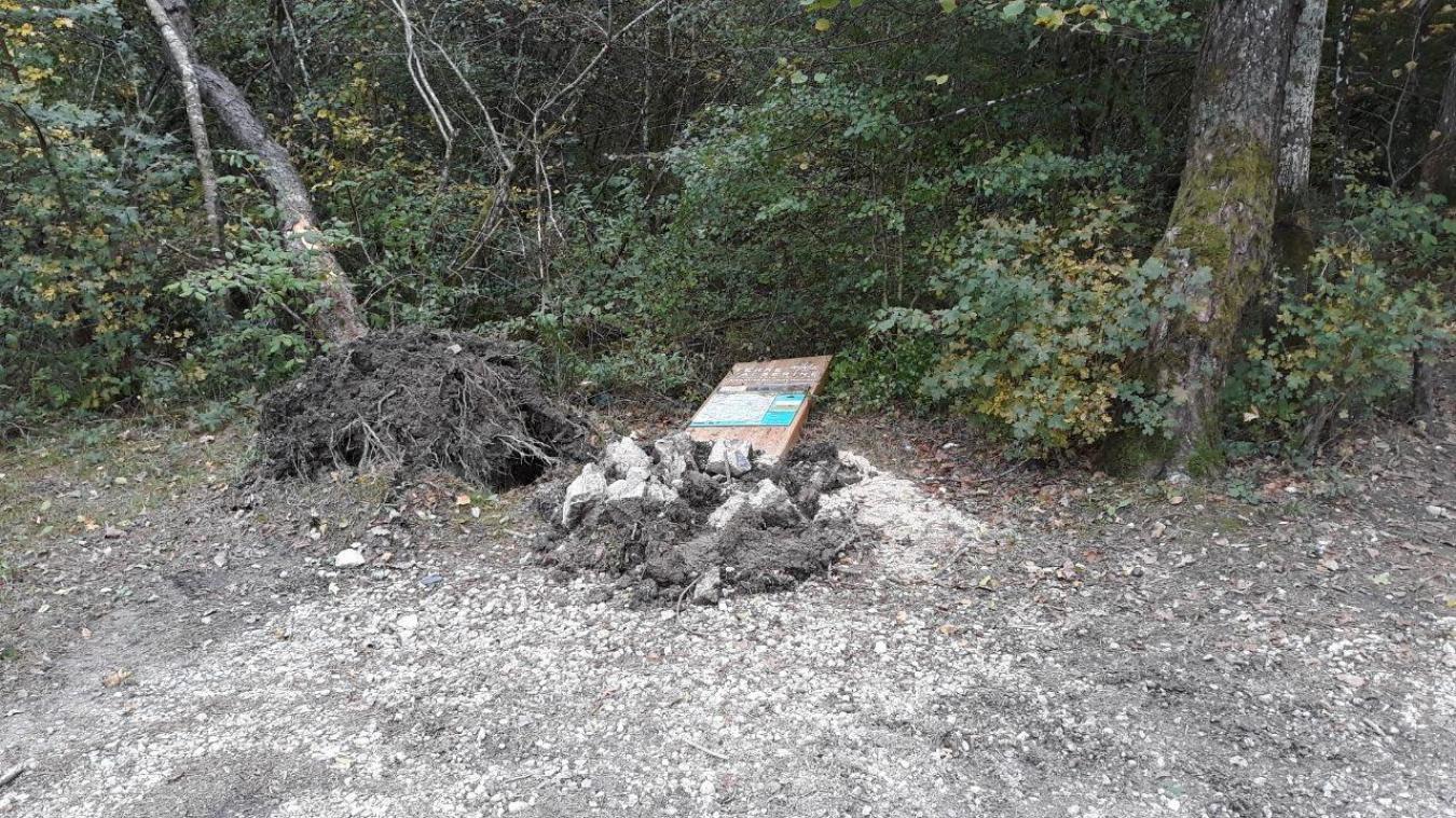La signalétique a été démolie, un arbre déraciné...