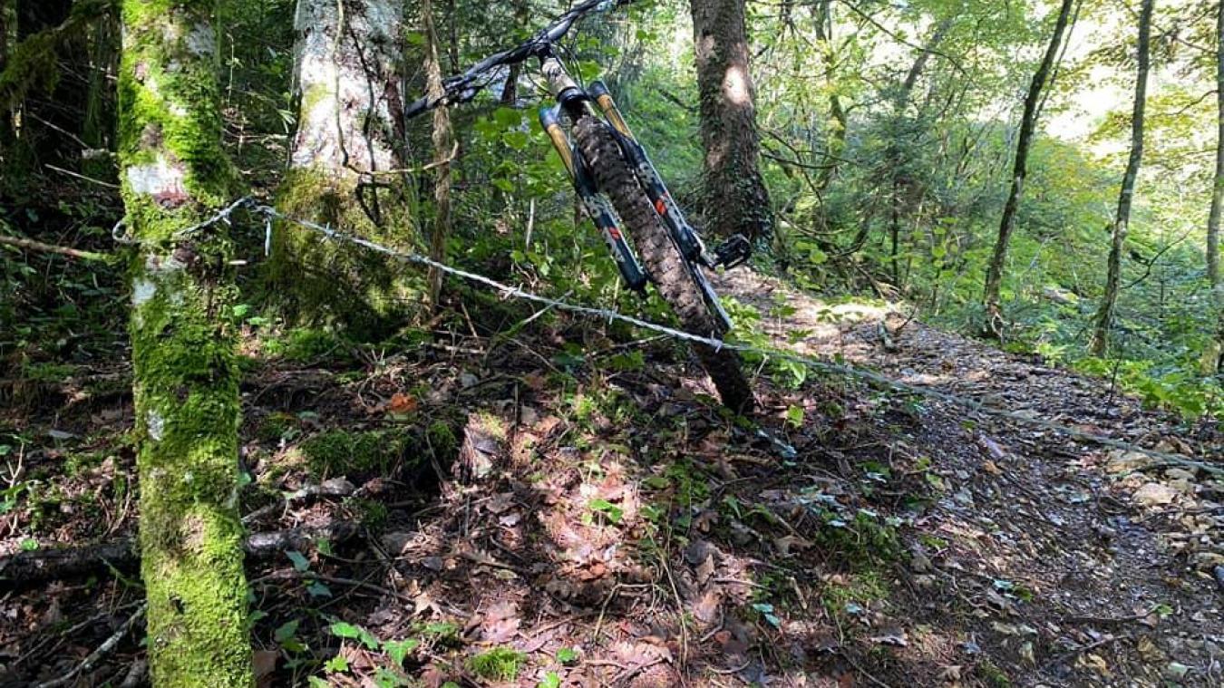 Les fils barbelés étaient tendus entre deux troncs d'arbres.