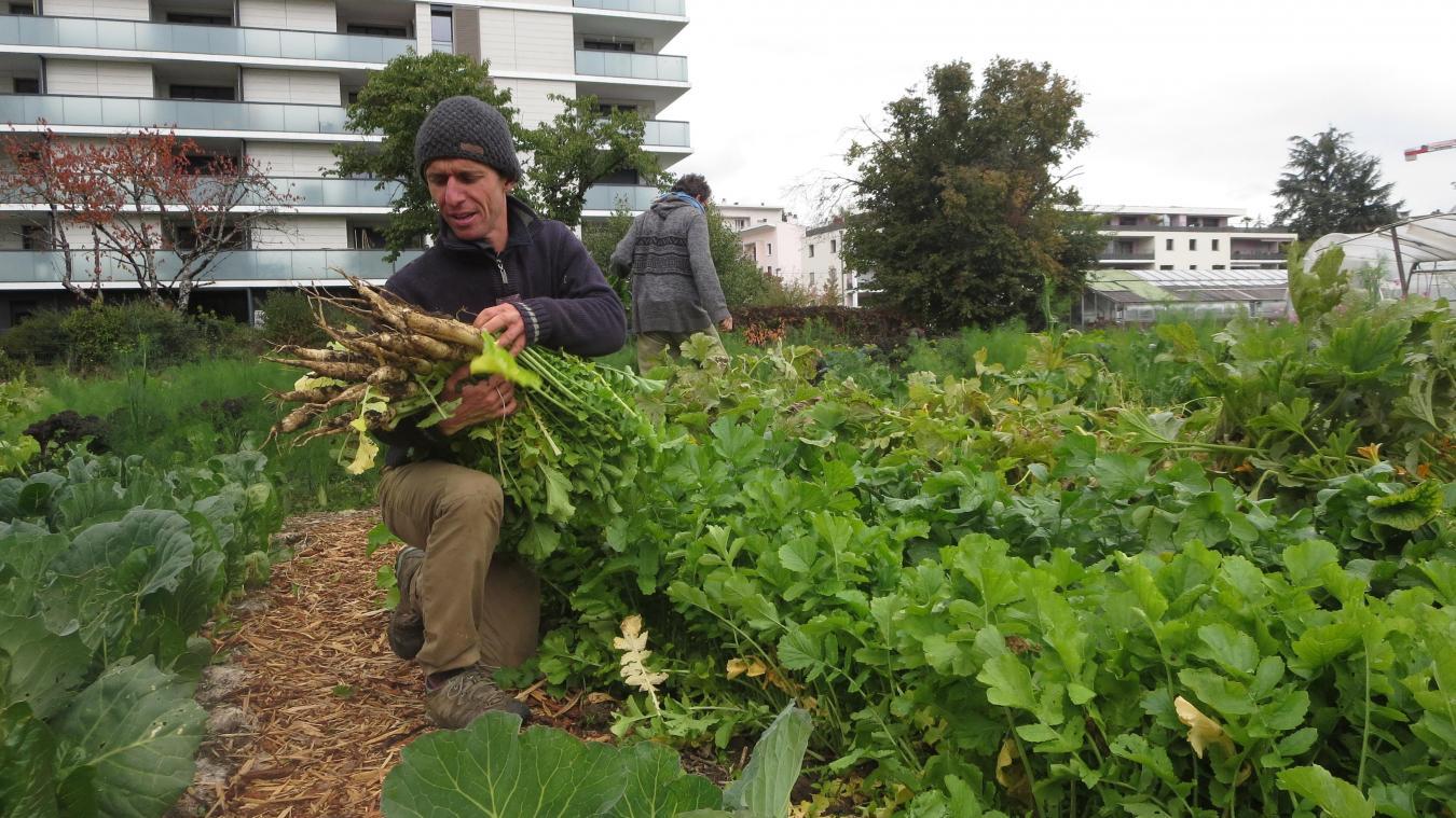 Sylvain Leroux est aidé au quotidien par les bénévoles de l'association Ceux qui sèment.