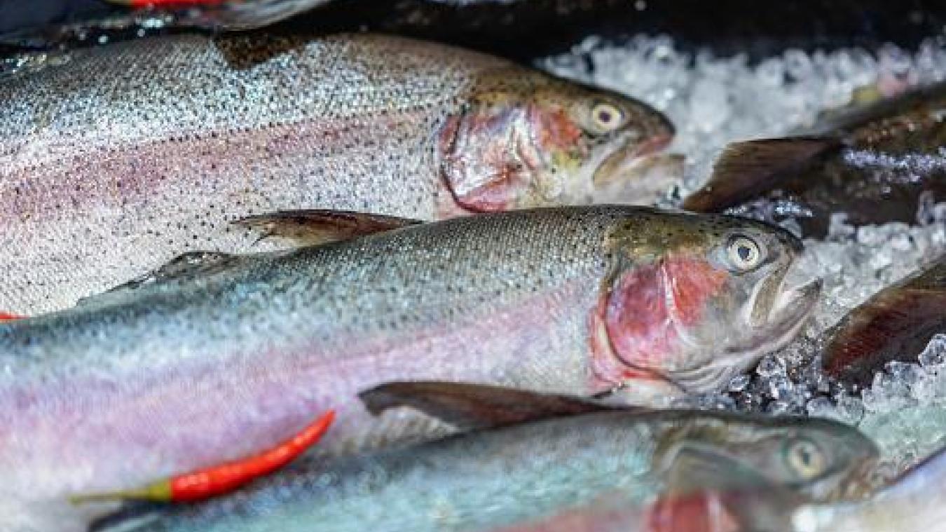 En plus des poissons, l'individu a également dérobé du déodorant et un poste de radio. Photo : istockphoto.