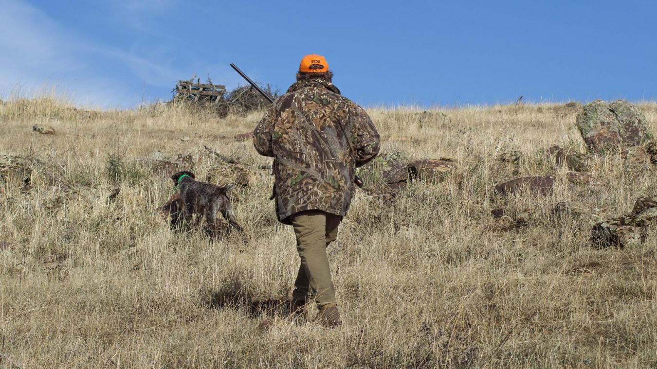 Ain : chasseurs, préfecture et association argumentent sur la chasse autorisée en confinement