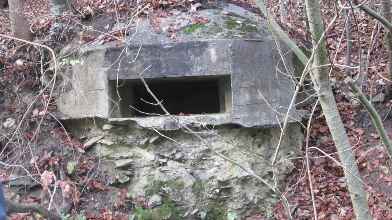 Blockhaus bétonné pour mitrailleuses, situé entre les Vorziers et Blancheville.
