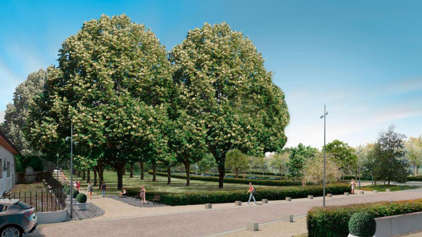 (VIDEO) Ferney-Voltaire: des arbres abattus, mais remplacés pour l'aménagement de l'allée du château