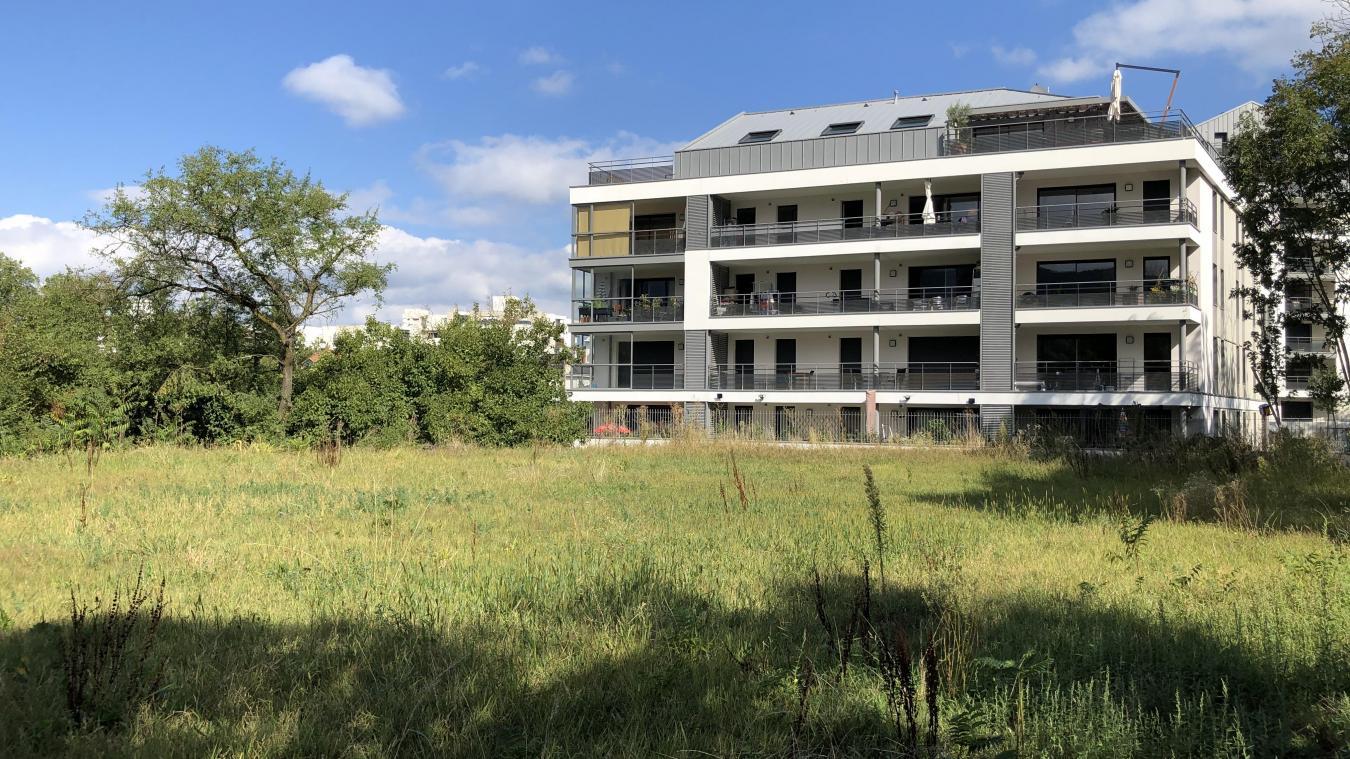 Le nouveau parc sera situé entre la rue du Salève et le chemin des Allobroges.