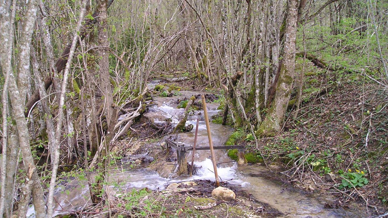 Le ruisseau de Balaigue (Bellaigue), utilisé par les moines pour faire tourner divers moulins.