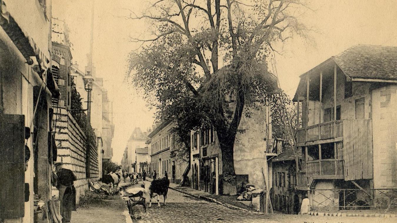 Une vue de la Grand'Rue à la fin du XIXe siècle, qui montre qu'un peu d'ordre et de respect des règles d'hygiène n'étaient pas un luxe  à Saint-Julien.