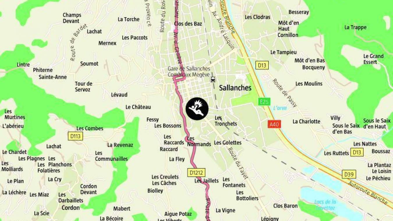 Le 11 mars dernier Sylvie Aubry, policière municipale à Sallanches, était fauchée par un 4x4.