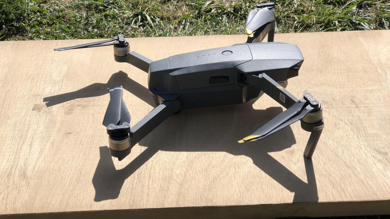 Marnaz: il monte sa société pour éradiquer les nids de guêpes et de frelons par drone
