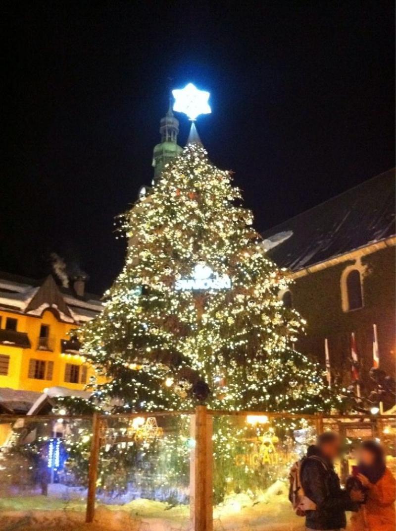 Entre l'illumination du sapin, tous les ans au début du mois de décembre et le joli centre-ville de Megève, il y a effectivement de quoi faire dans cette station très « hype »