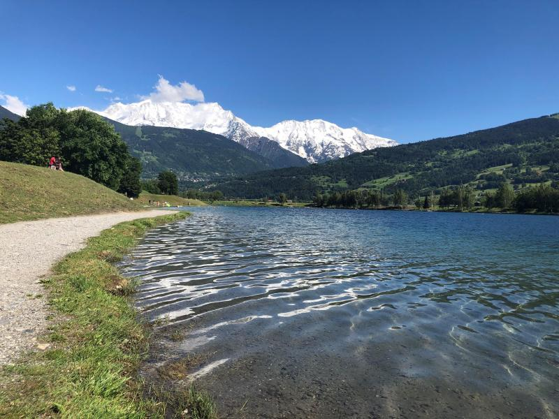 Les résultats des analyses des eaux du lac de Passy, présentés jeudi 31 octobre, montrent une présence importante de perchlorates.