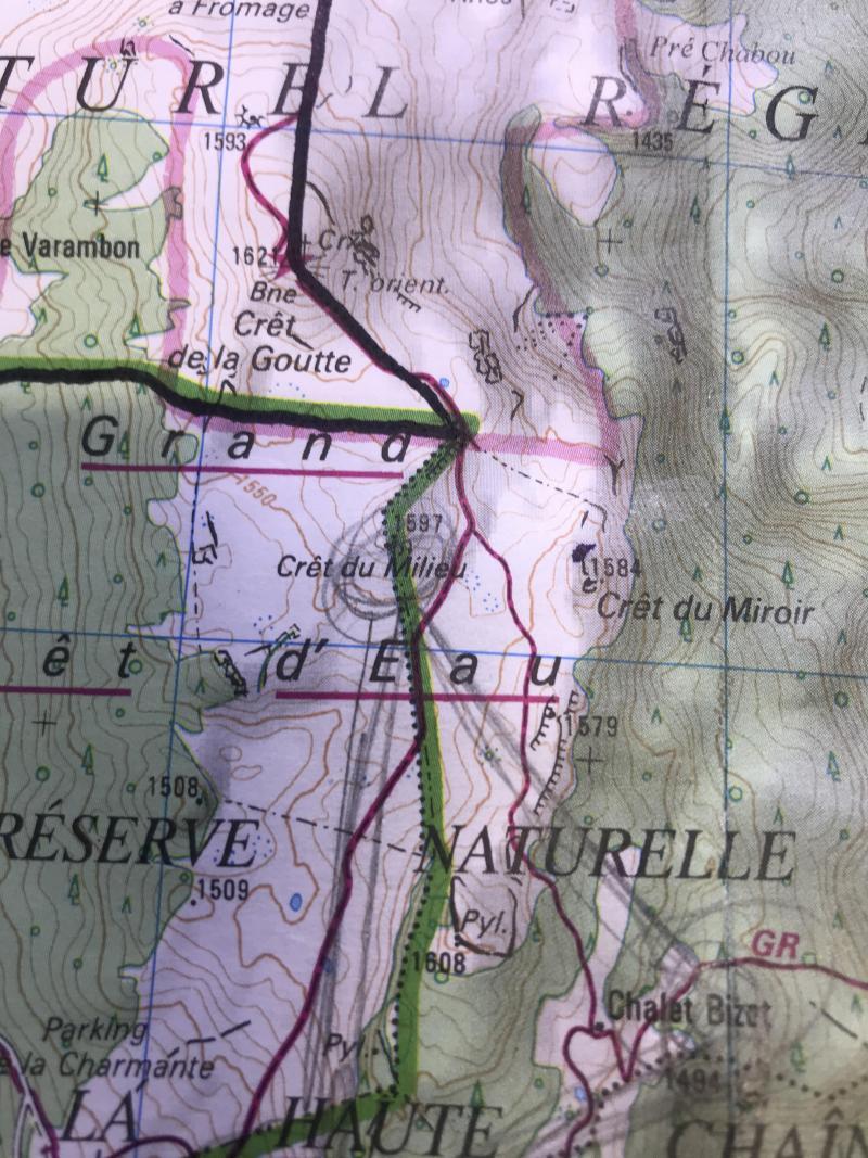 La zone de recherches, communiquée par la gendarmerie. Les randonneurs étaient au Crêt du Miroir, bien loin de leur destination.