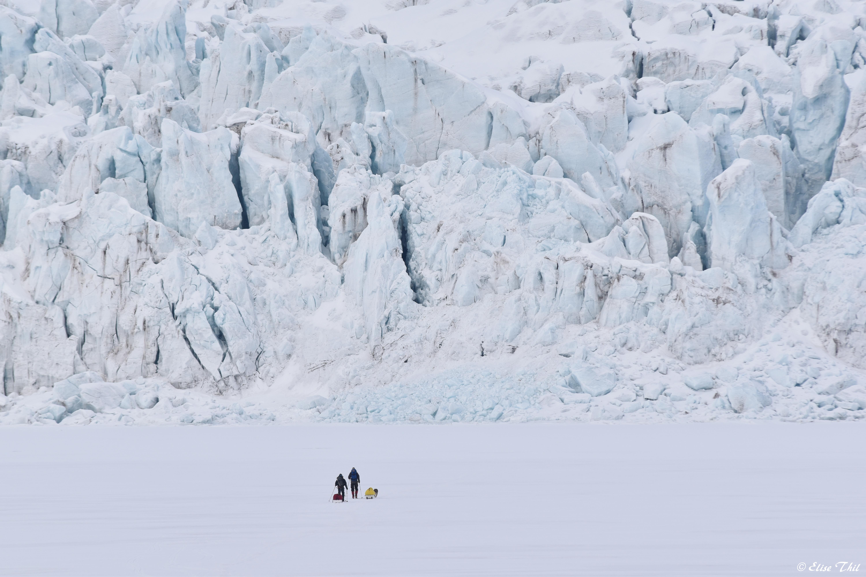 Des camarades de formation de Loup partent pour 10 jours d'expédition. Sur la photo ils sont sur la banquise avec 80m de haut de front de glacier face à eux (avril 2019).