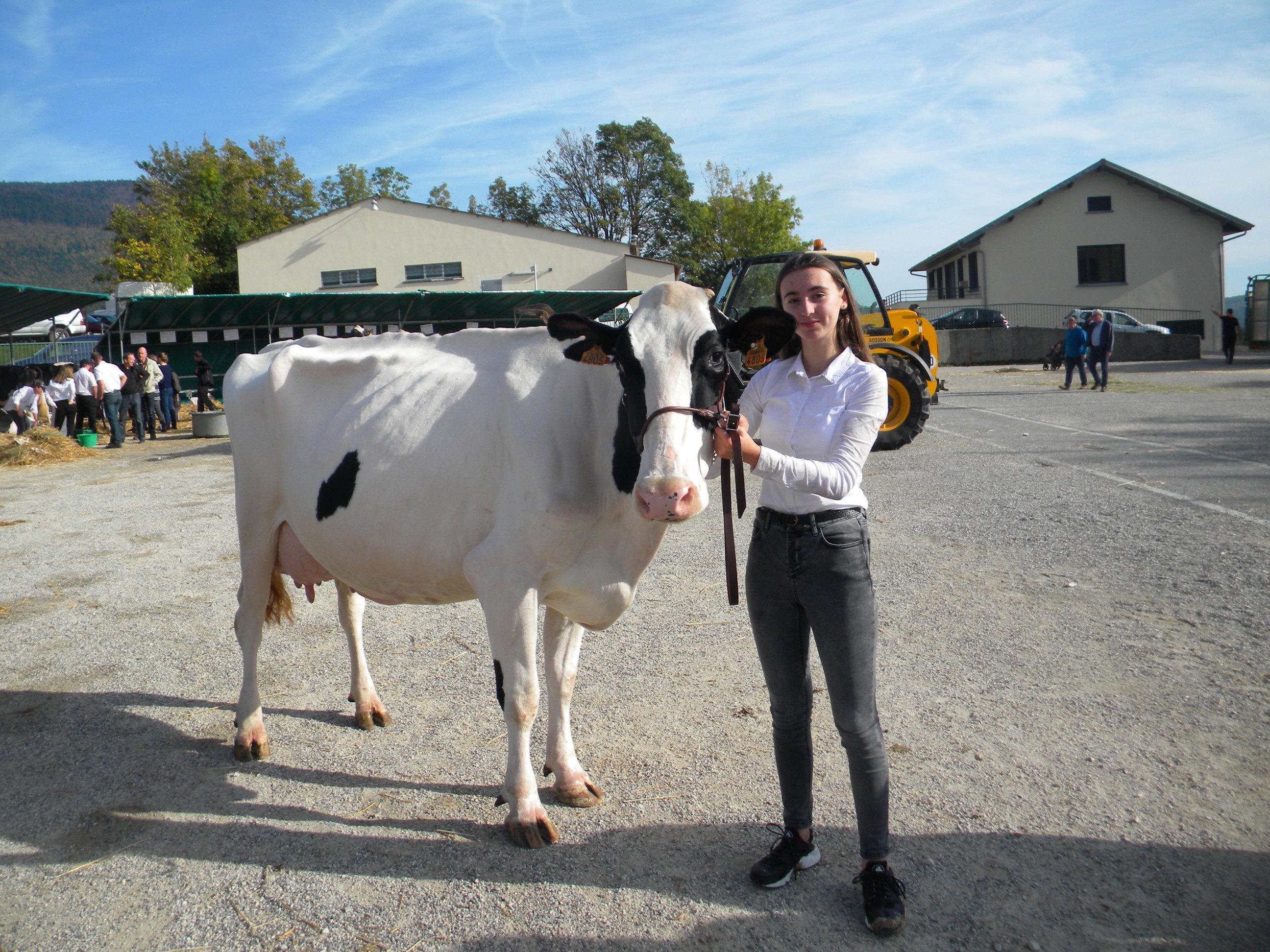 La vache blanche de chez Virginie Bossy à Péron.