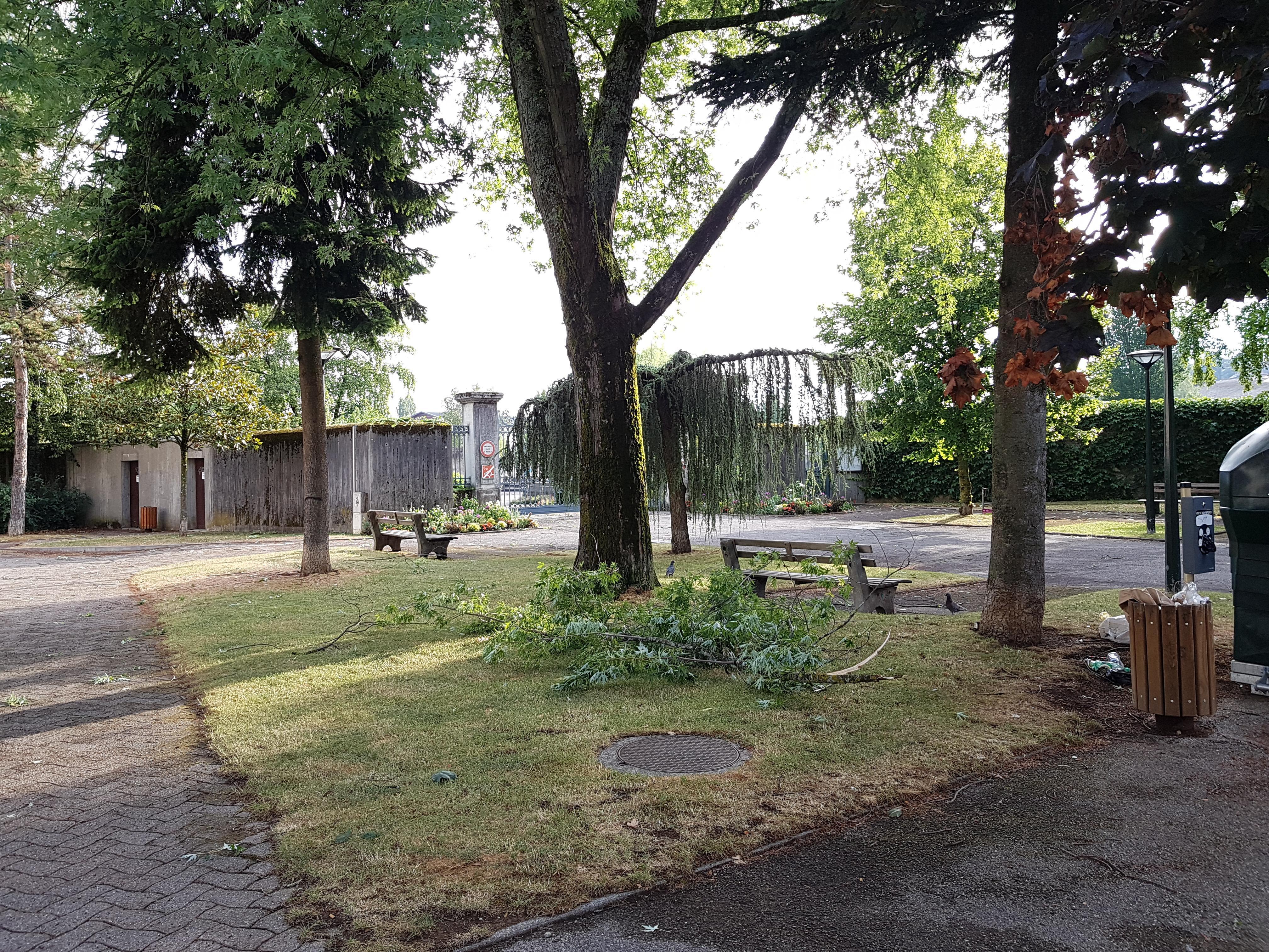 Une branche a été arrachée devant le cimetière de Loverchy à Annecy.