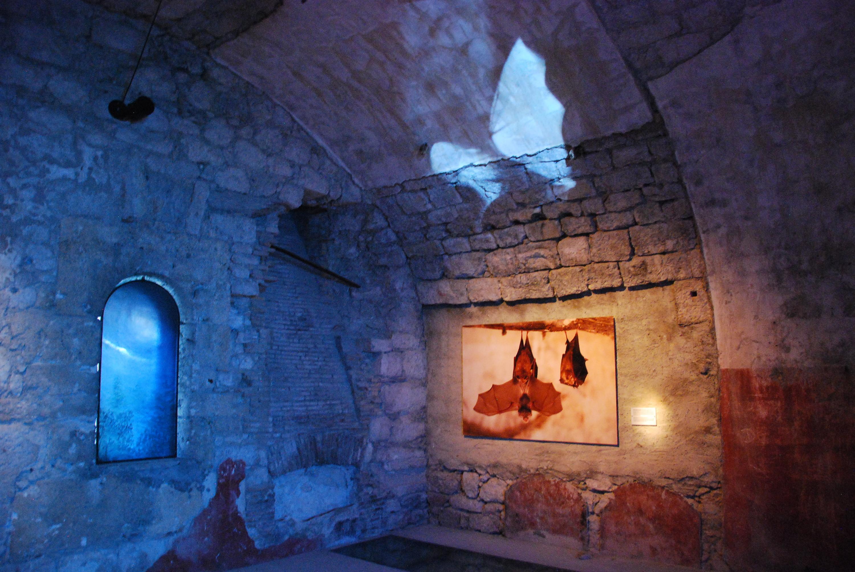 Fort-l'Écluse (Léaz) : un voyage dans le temps, une escapade aux portes du Pays de Gex