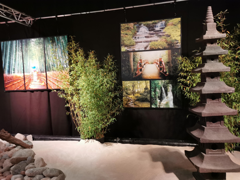 L'art du jardin japonais.