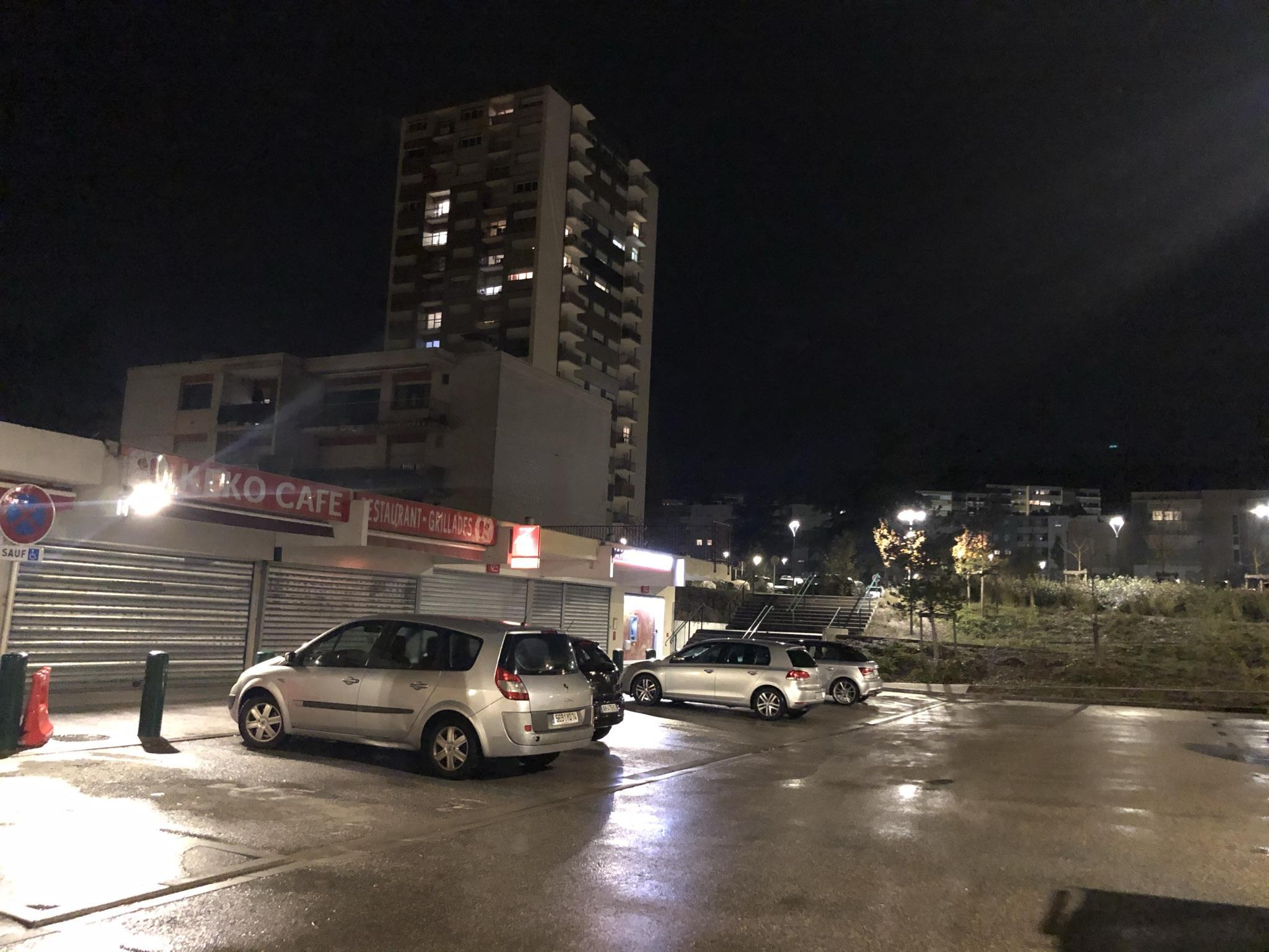 (PHOTOS) « Dans le centre-ville d'Annemasse, à 21 heures, c'est une vraie envolée d'oiseaux »